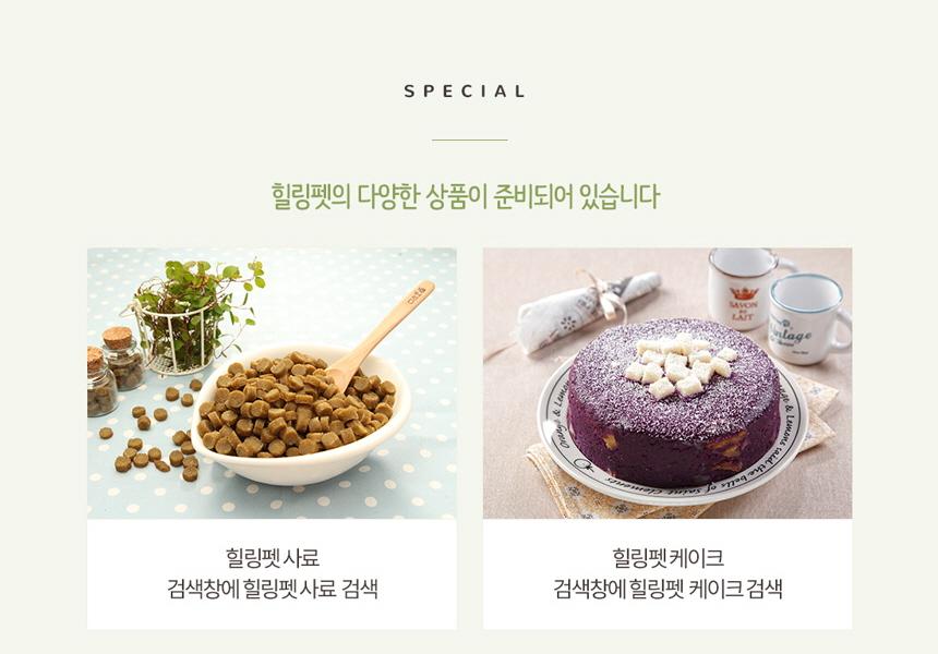 힐링펫 - 소개