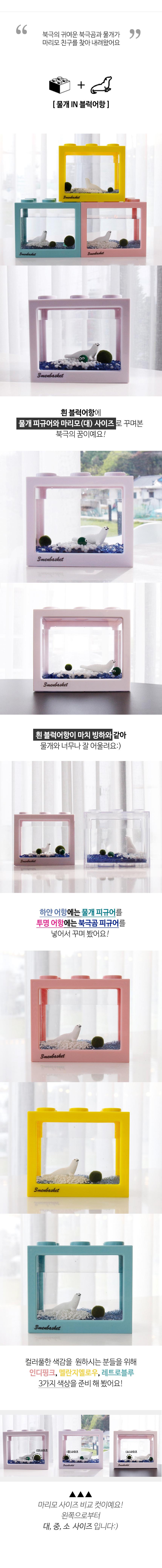 북극의 꿈 국산 마리모 DIY세트 - 세남자바스켓, 11,900원, 키우기, 식물