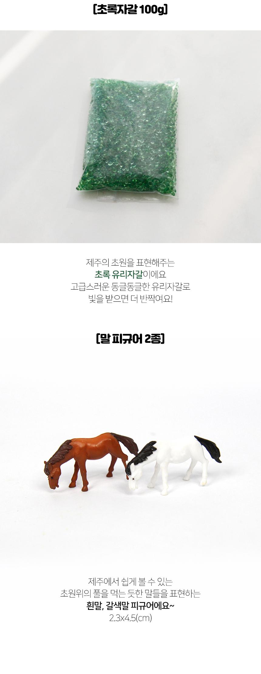 제주 국산 마리모 말 DIY 세트 - 세남자바스켓, 9,800원, 키우기, 식물