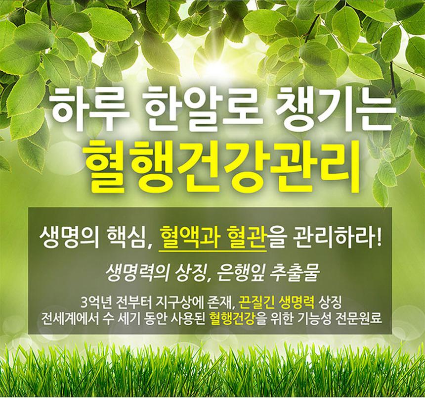 doctorsGinkgo60c_04.jpg