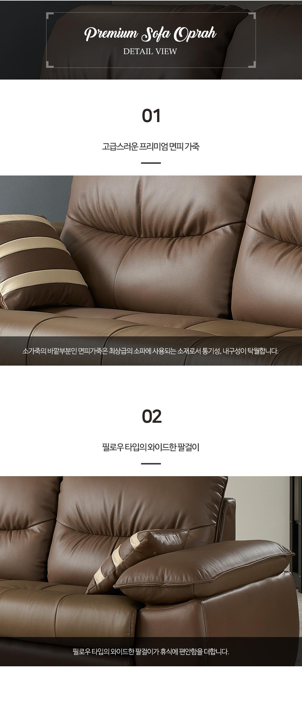 gr_oprah_couch05.jpg