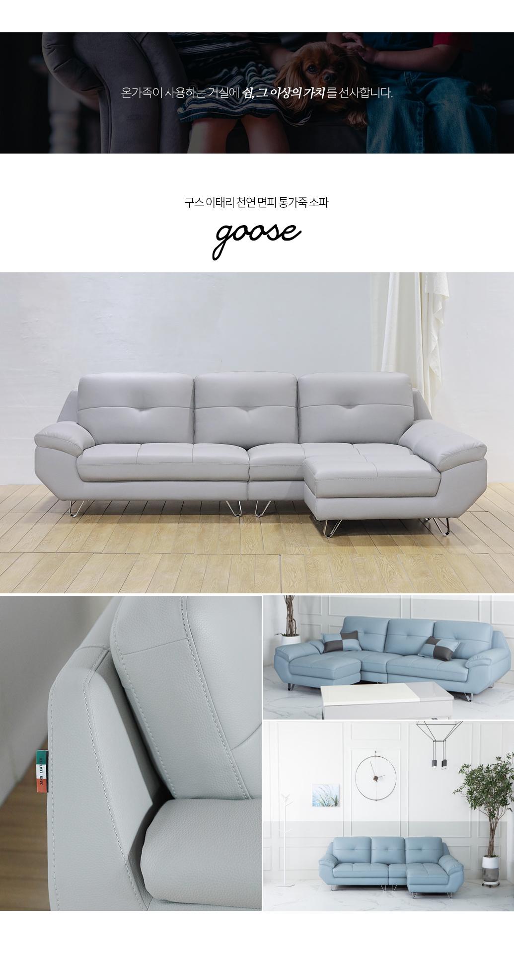 goose_08.jpg