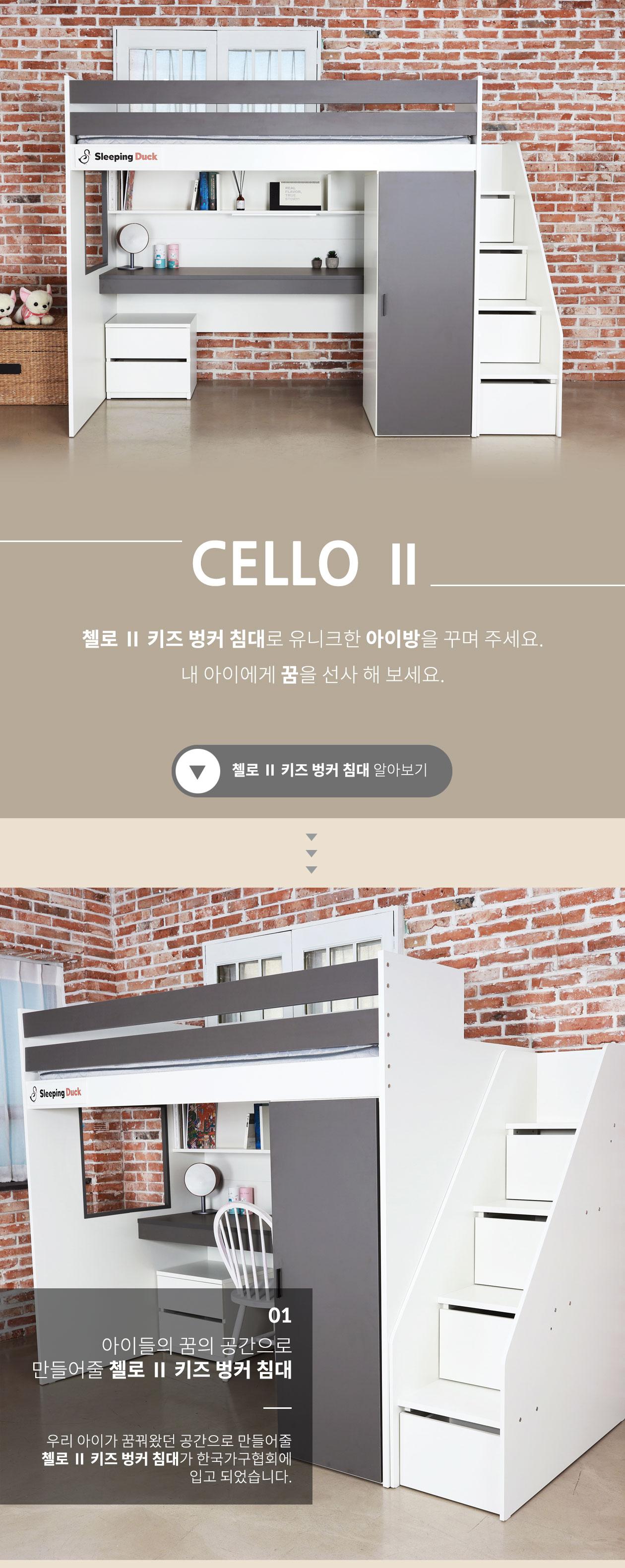 cello_2_01.jpg