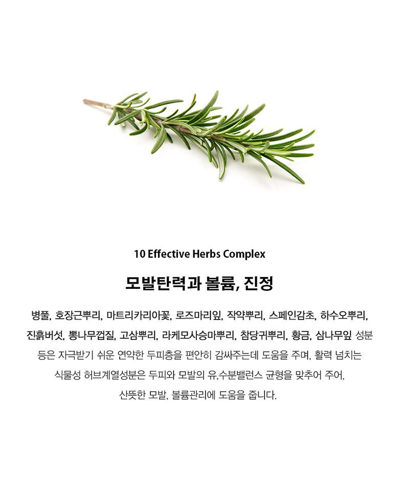 지성 다크시나몬 어번던스 샴푸 500g - 딥퍼랑스, 25,600원, 헤어케어, 샴푸/린스