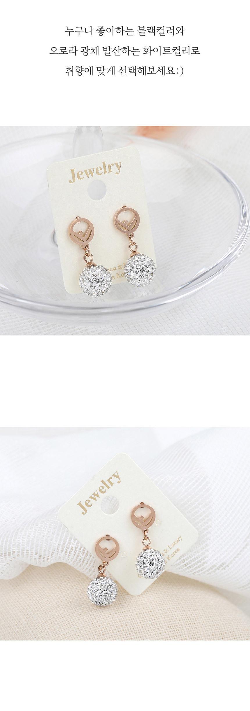 크리스탈 볼 써지컬 스틸 귀걸이 서지컬 롱 드롭 여성 - 링코, 9,900원, 실버, 드롭귀걸이