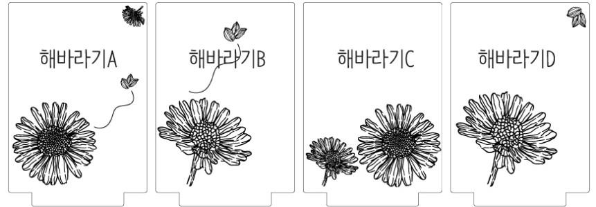 sunflower_option.jpg (861A?300)