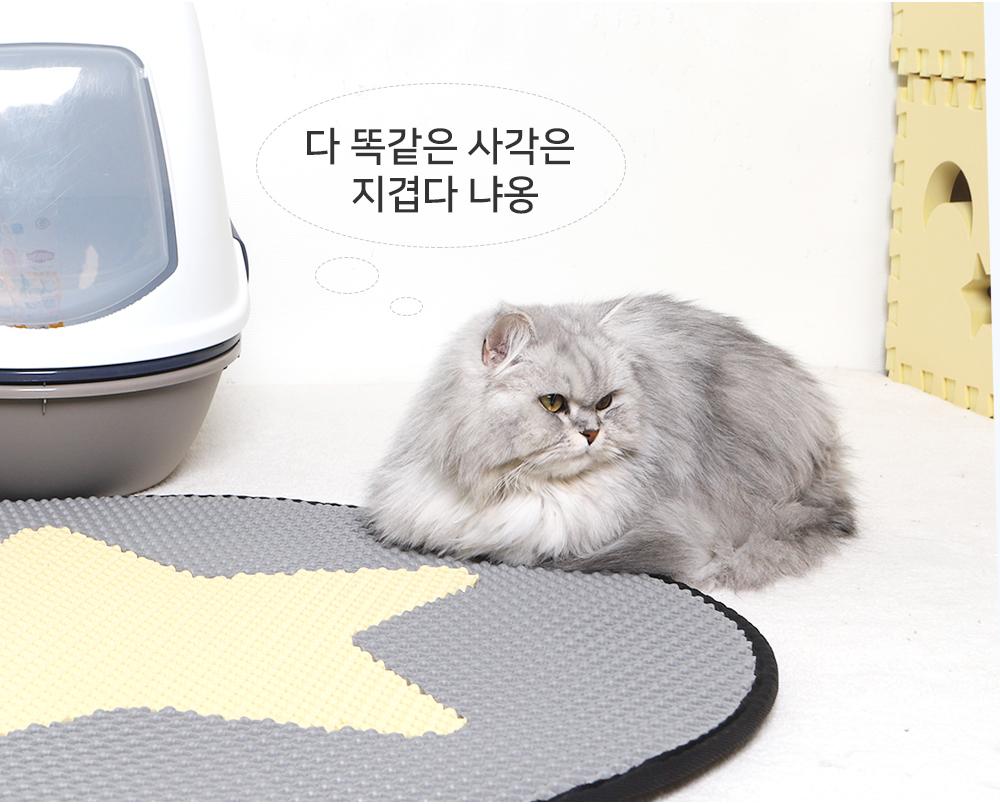 스타캣 라운드 고양이 모래매트 별모양-연노랑25,900원-스타캣펫샵, 고양이용품, 화장실/위생용품, 화장실 매트바보사랑스타캣 라운드 고양이 모래매트 별모양-연노랑25,900원-스타캣펫샵, 고양이용품, 화장실/위생용품, 화장실 매트바보사랑