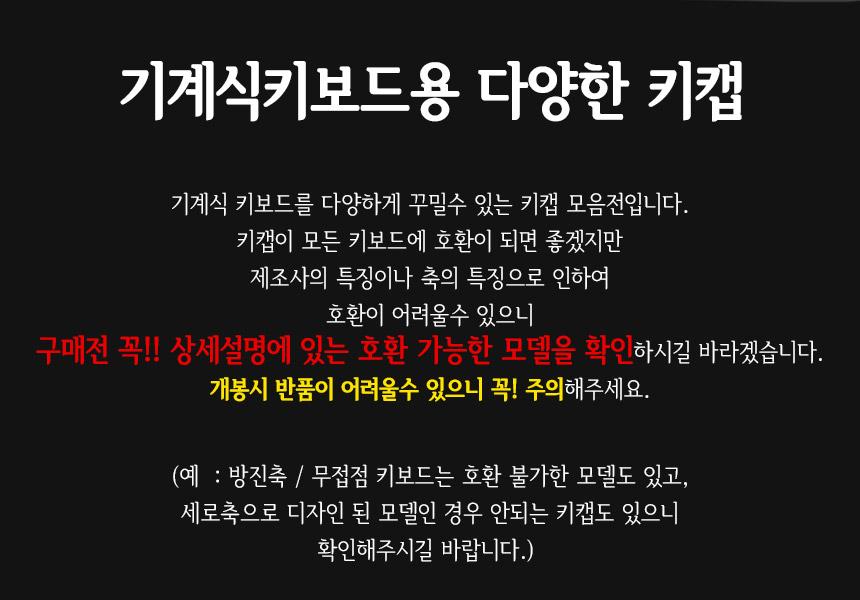 위즈위즐 - 소개