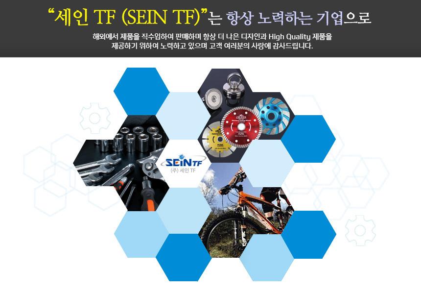 SEINTF - 소개