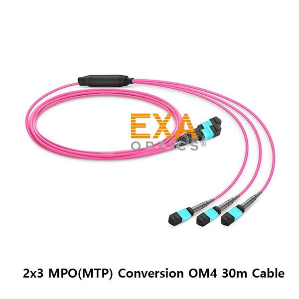 [EXA] 2*12C MPO-3*8C PO OM4 30M 光ファイバ ケーブル