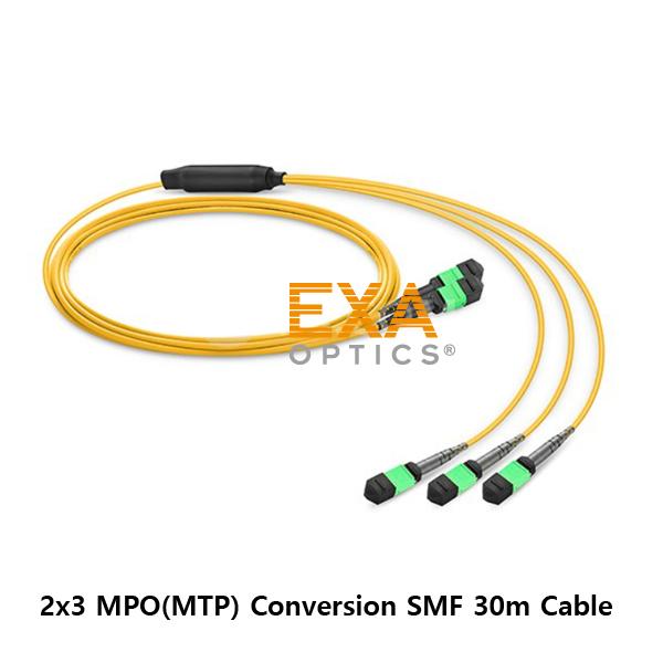 [EXA] 2*12C MPO- 3*8C MPO 30M SMF 光ファイバ ケーブル