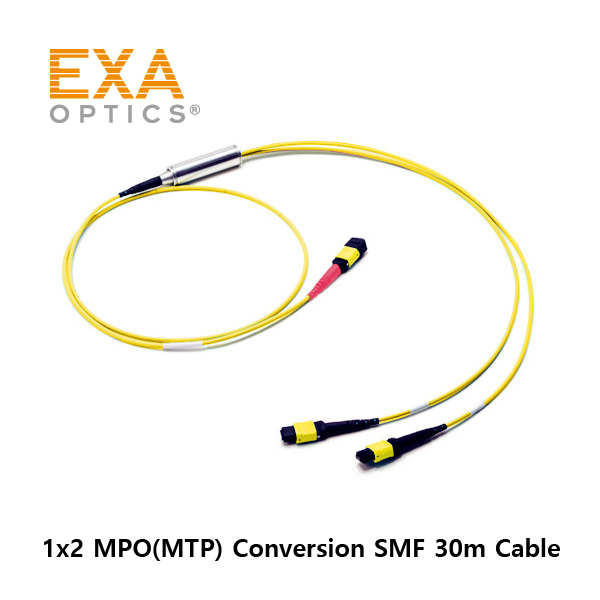 [EXA] 24C MPO-2*12 MPO SMF 30M 光ファイバ ケーブル
