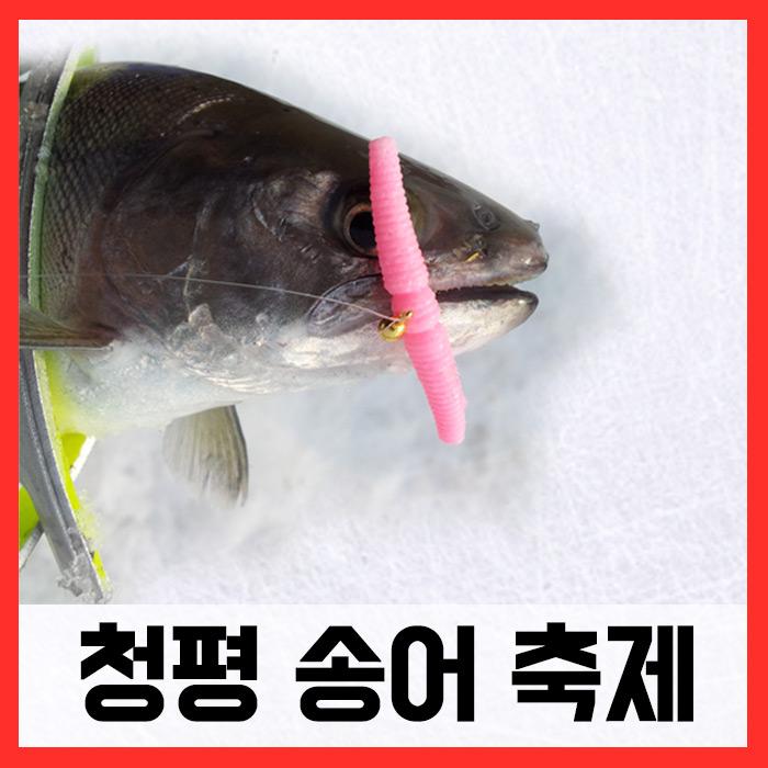 청평송어축제/ 매직웜원스톱채비완성세트 (송어)