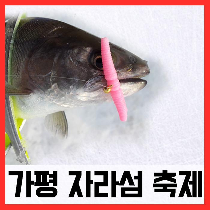 가평송어축제/ 매직웜원스톱채비완성세트 (송어)