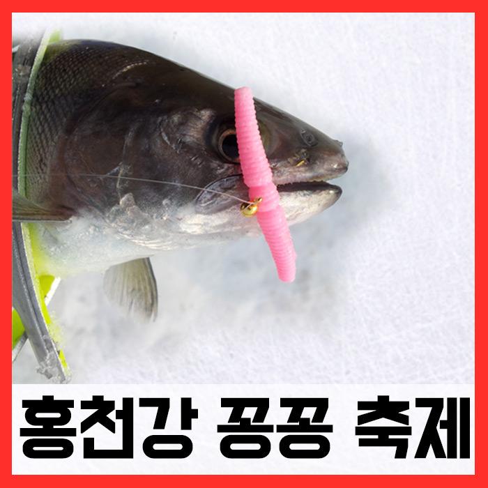 홍천송어축제/ 매직웜원스톱채비완성세트 (송어)
