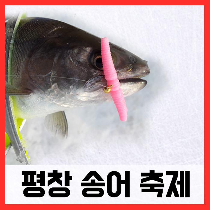 평창송어축제/ 매직웜원스톱채비완성세트 (송어)