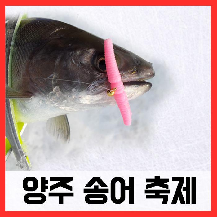 양주송어축제/ 매직웜원스톱채비완성세트 (송어)