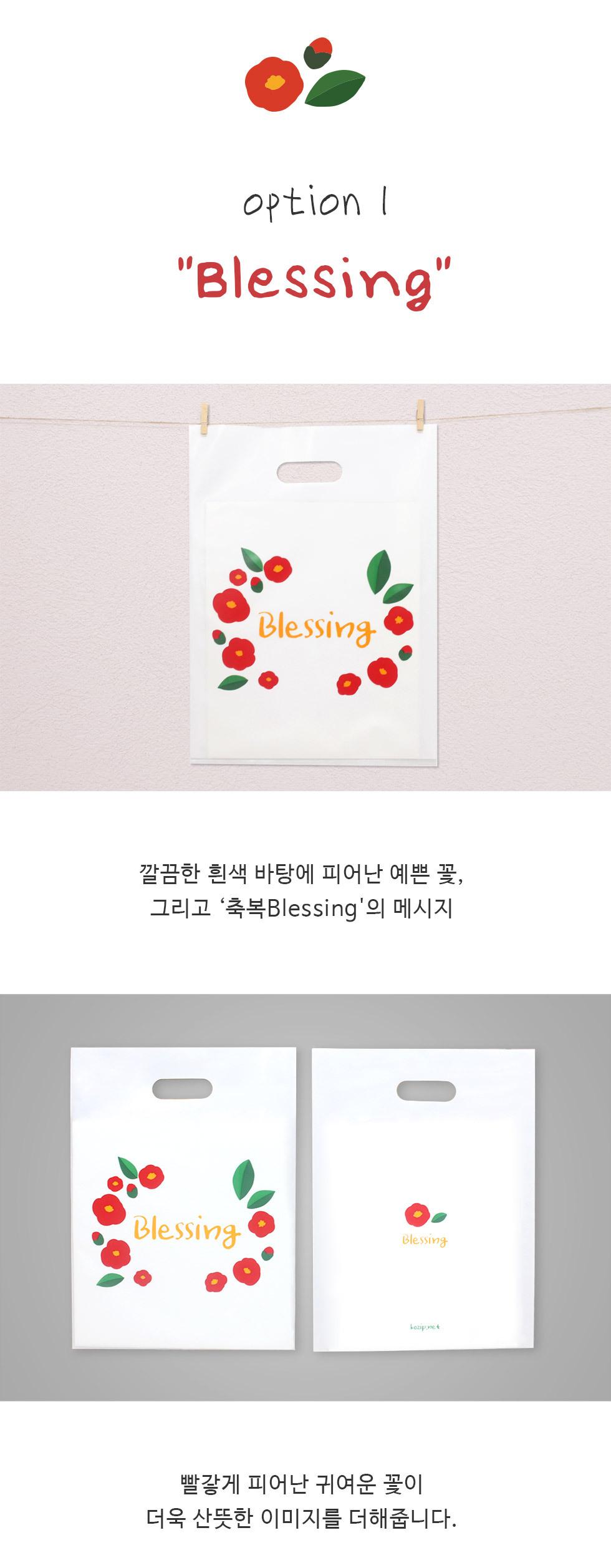 크리스챤 비닐백 비닐쇼핑백 중 2종 - 옵션1 블레싱 흰색